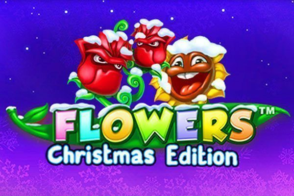 Flowers X-Mas edition