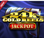 Phenomenal win on Gold Reels: christiaan wins close to €22,000 in one streak!