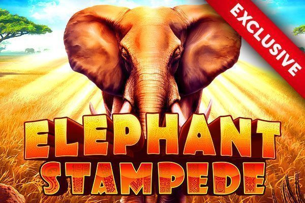 Elephant Stampede, only at Golden Palace